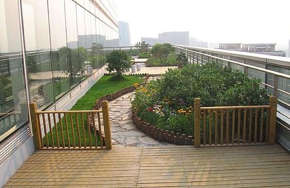 屋顶花园植物配置图片