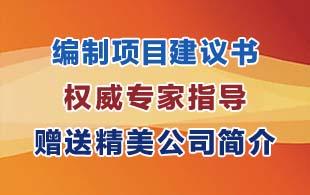 郑州惠济区附近专业代写项目建议书